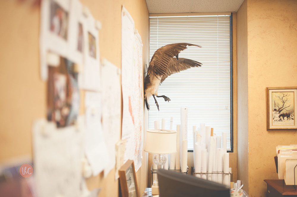 Schalk office-32.jpg