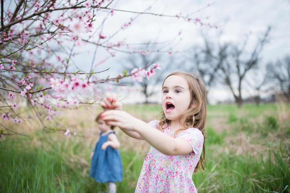 blossom 16-2.jpg