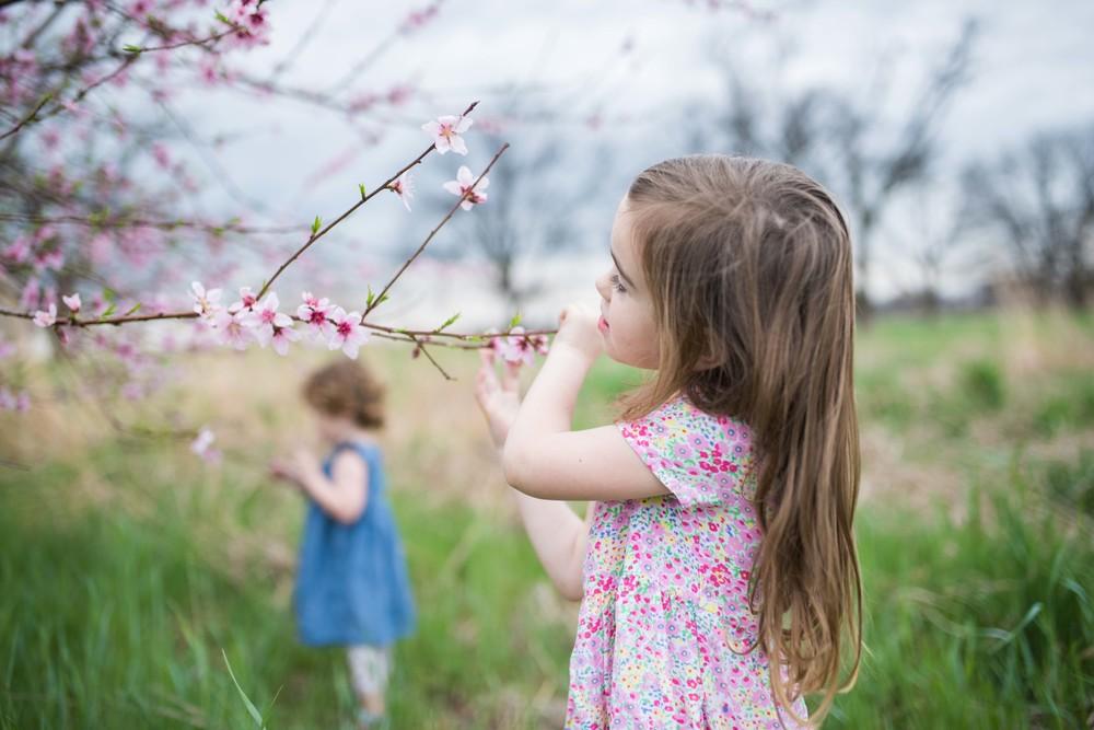 blossom 16-3.jpg