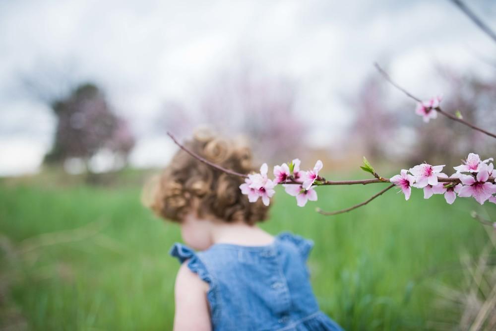 blossom 16-8.jpg