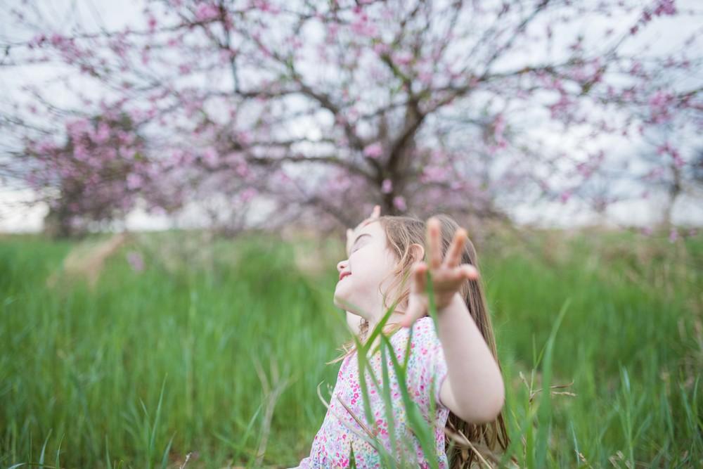 blossom 16-38.jpg
