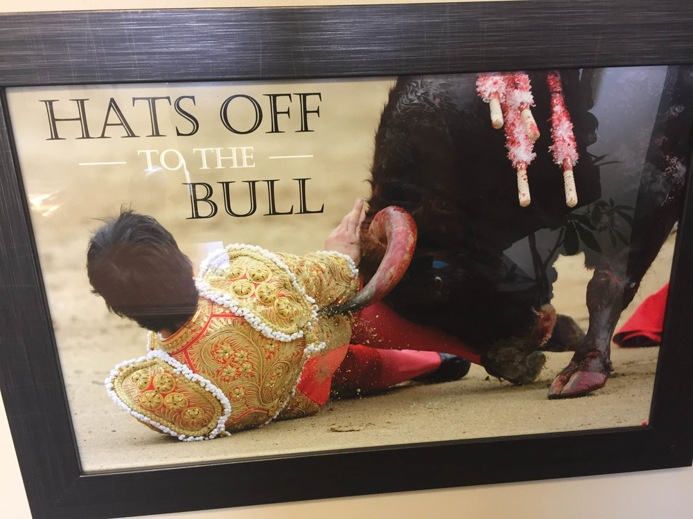 hats off to the bull office picture