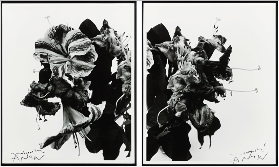 Nobuyoshi Araki, From Close to Range, 1991, Sotheby's, Estimate: $40,000 – 60,000