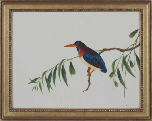 A set of 22 Ornithological Studies, Early Nineteenth Century, Estimate: $15,000 – 25,000