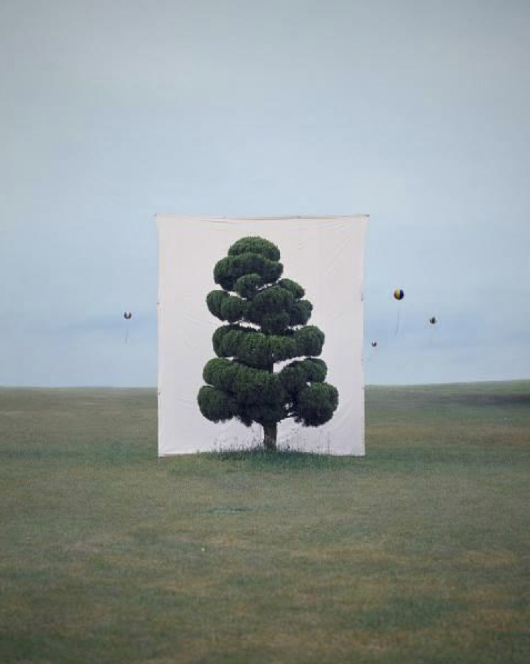 Myoung Ho Lee, Tree #2, 2006