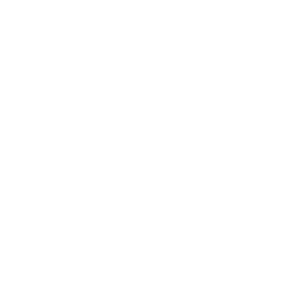 4d_lifestyle equities.png