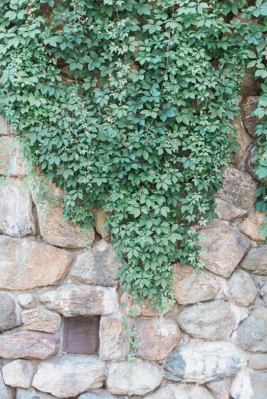 stonebarns15.jpg