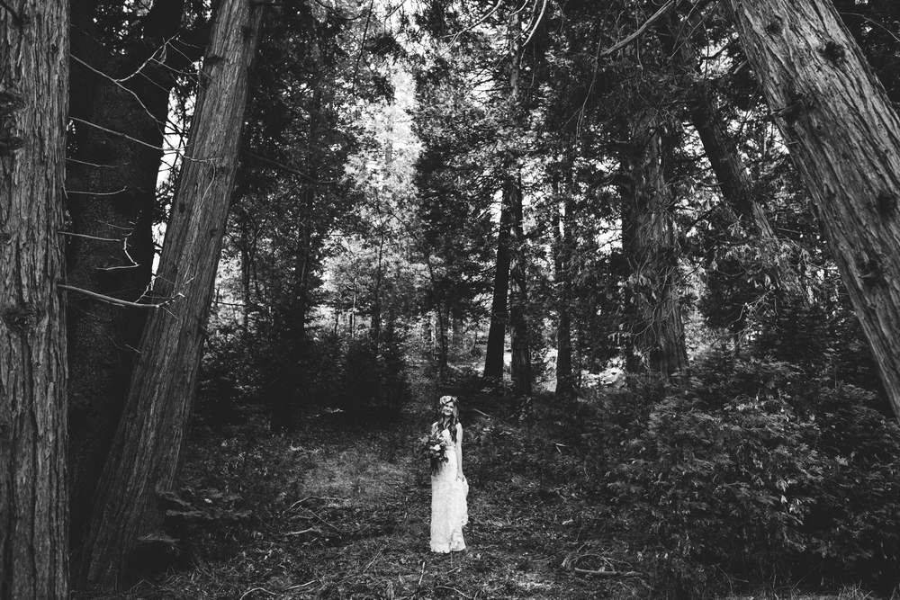 ©Isaiah & Taylor Photography - Pine Rose Cabin - Lake Arrowhead - Los Angeles Wedding Photographer-030.jpg