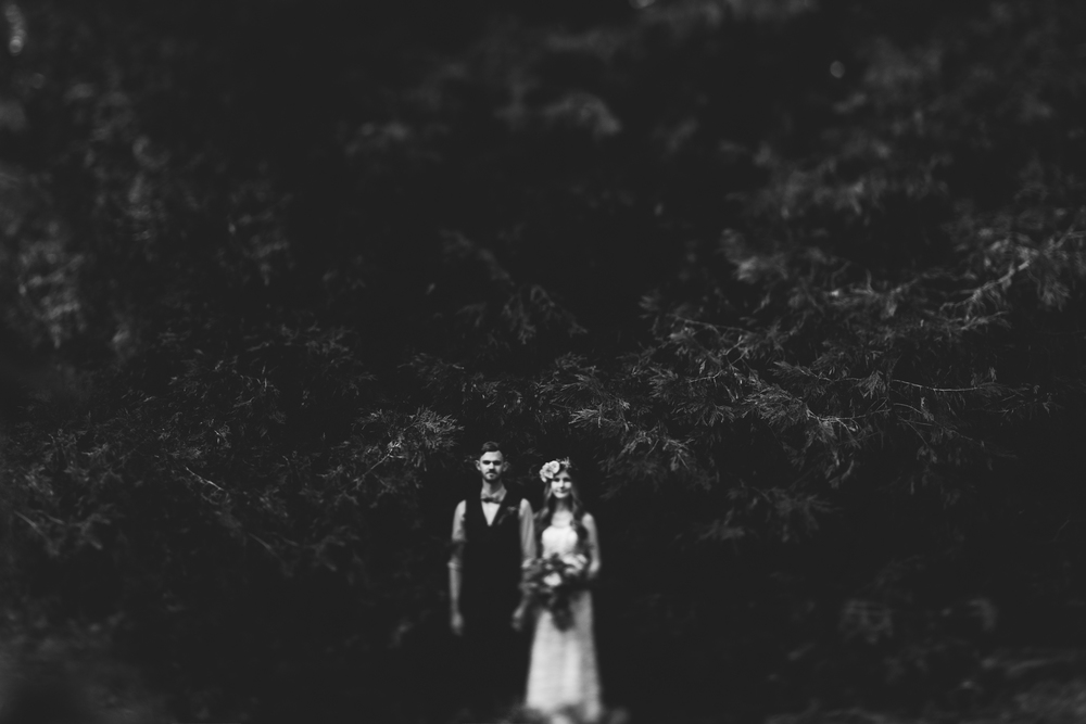 ©Isaiah & Taylor Photography - Pine Rose Cabin - Lake Arrowhead - Los Angeles Wedding Photographer-086.jpg
