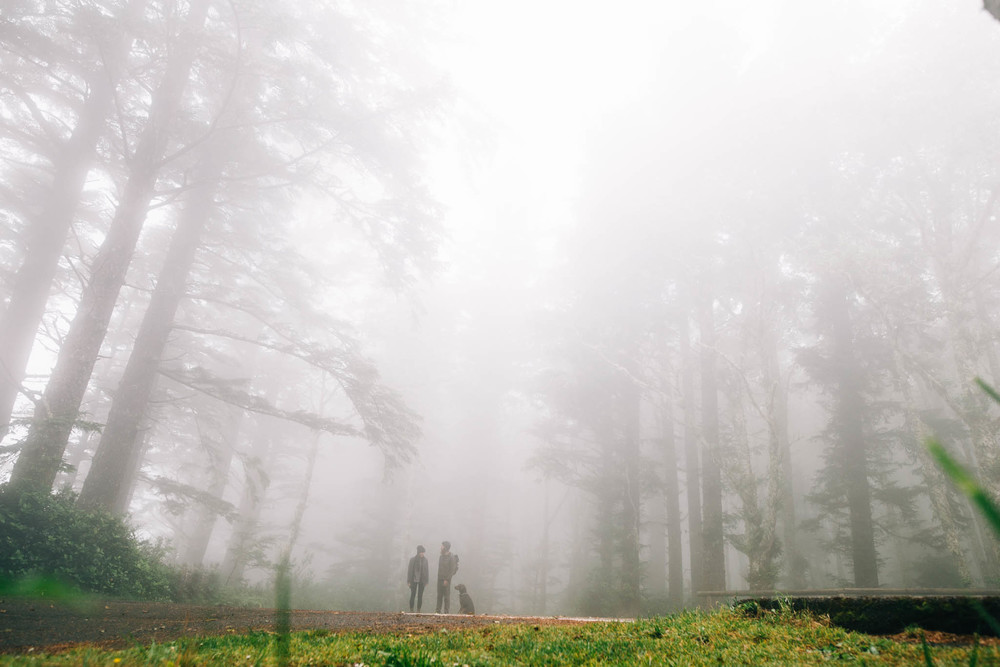 ©The Ryans Photography_Foggy Trails, Oregon-012.jpg