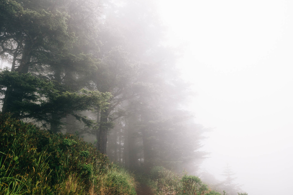 ©The Ryans Photography_Foggy Trails, Oregon-013.jpg