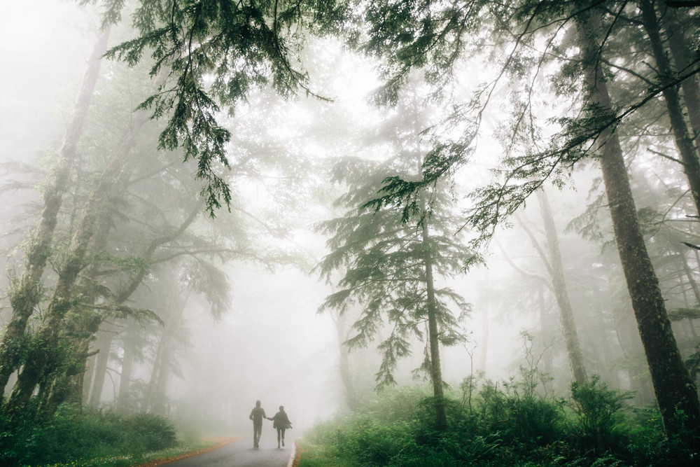 ©The Ryans Photography_Foggy Trails, Oregon-023.jpg
