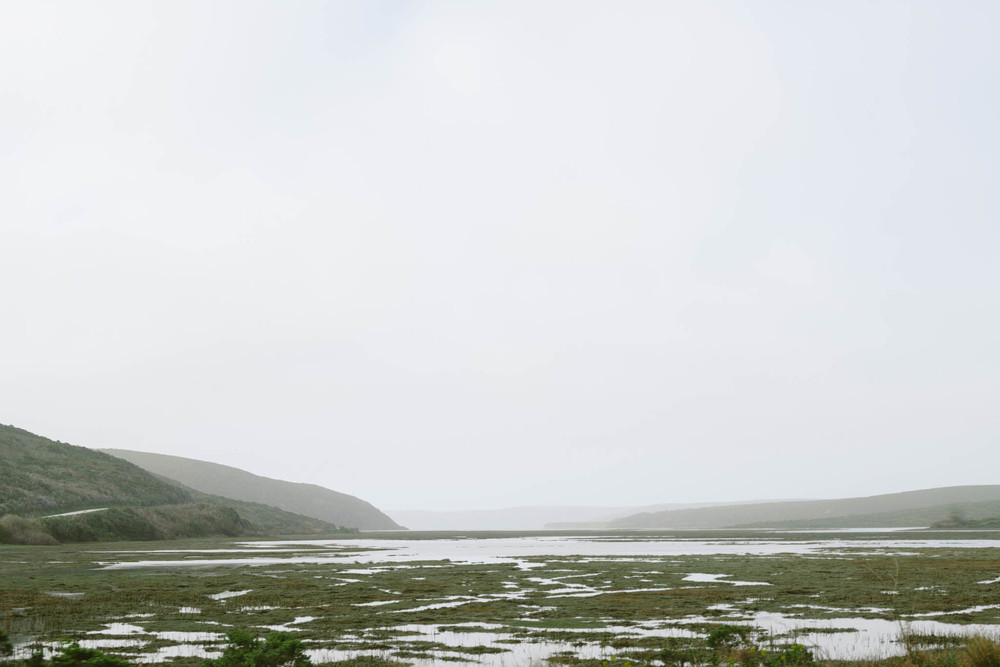©The Ryans Photography - Point Reyes, California-16.jpg