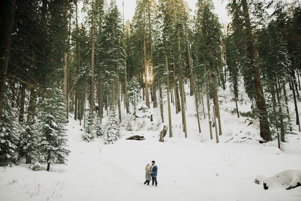 ©Isaiah-&-Taylor-Photography---George-&-Alyssa-Engagement---Sequoia-National-Park,-California-58.jpg