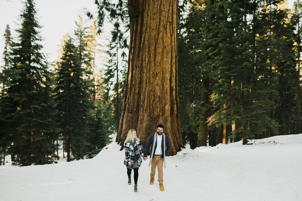 ©Isaiah-&-Taylor-Photography---George-&-Alyssa-Engagement---Sequoia-National-Park,-California-103.jpg