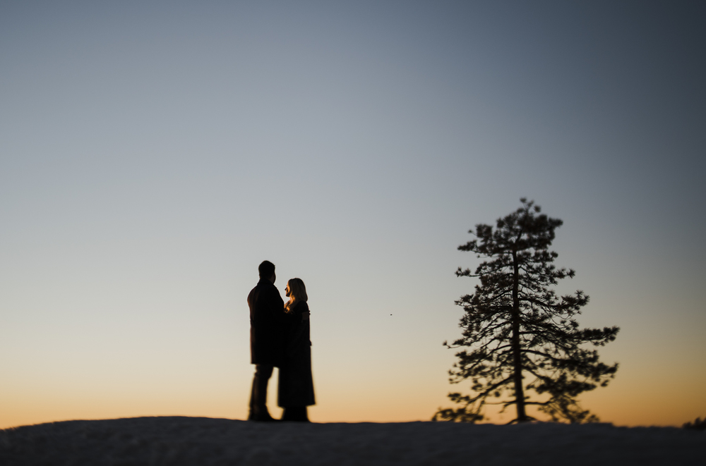 ©Isaiah-&-Taylor-Photography---George-&-Alyssa-Engagement---Sequoia-National-Park,-California-168.jpg