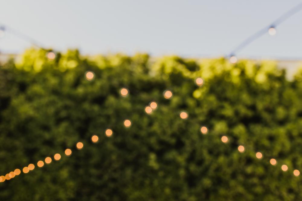 ©Isaiah & Taylor Photography - Franciscan Gardens Wedding Venue, San Juan Capistrano -68.jpg