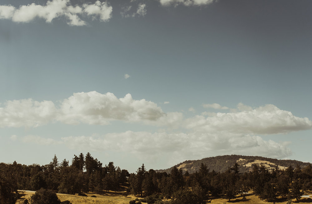 ©Isaiah + Taylor Photography - Sacred Mountain Ranch Wedding, Julian CA-02.jpg