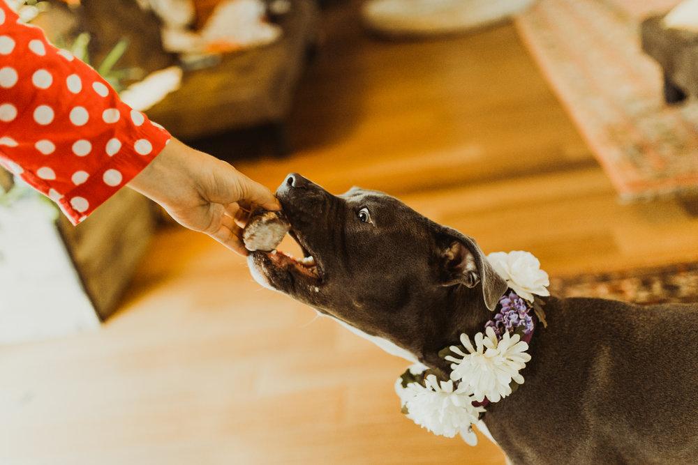 ©Isaiah + Taylor Photography - Sacred Mountain Ranch Wedding, Julian CA-18.jpg