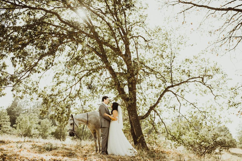 ©Isaiah + Taylor Photography - Sacred Mountain Ranch Wedding, Julian CA-120.jpg