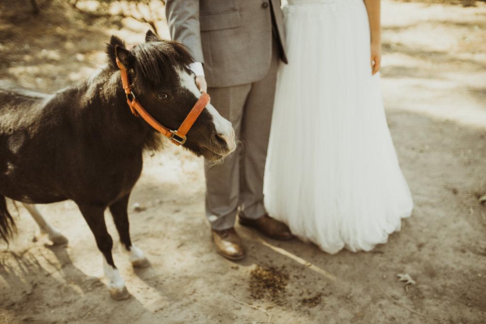 ©Isaiah + Taylor Photography - Sacred Mountain Ranch Wedding, Julian CA-126.jpg