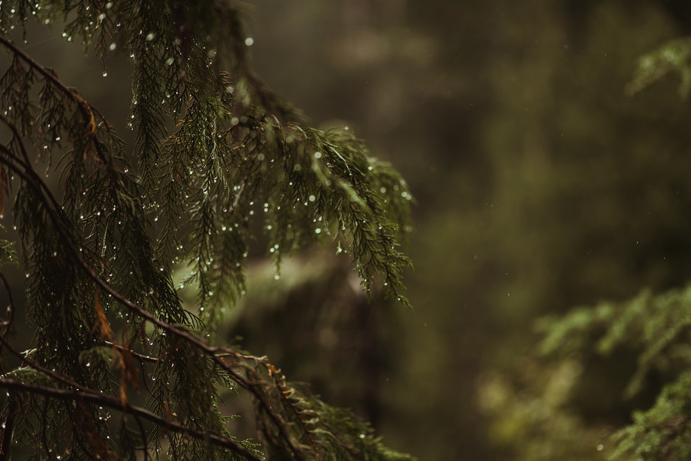 ©Isaiah-&-Taylor-Photography---Hidden-Lake-Cascade-Mountains-Engagement,-Washington-007.jpg