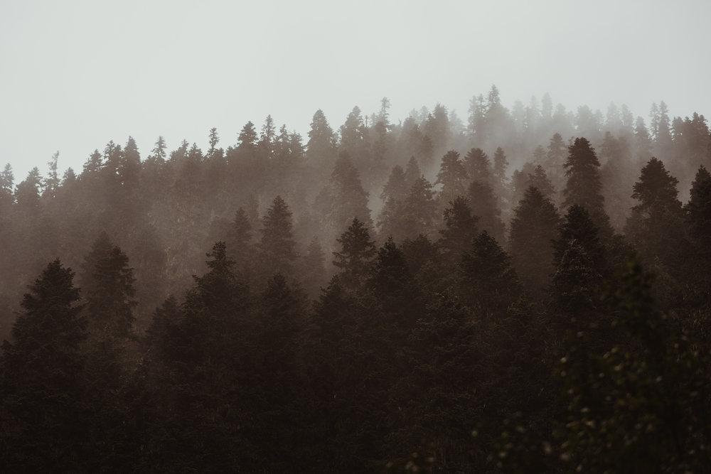 ©Isaiah-&-Taylor-Photography---Hidden-Lake-Cascade-Mountains-Engagement,-Washington-025.jpg