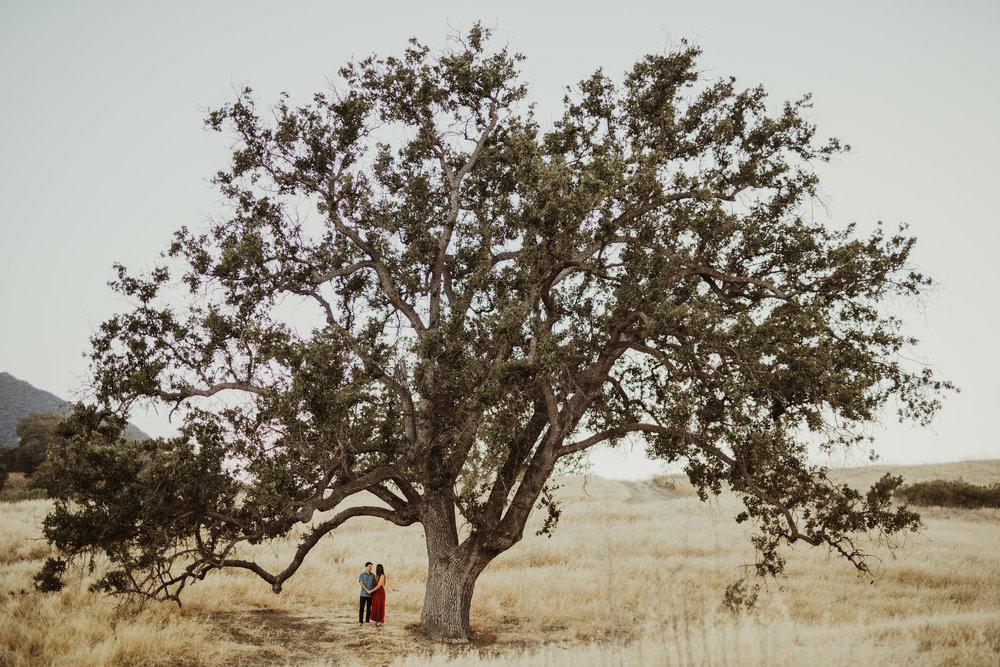 Isaiah&TaylorPhotography-Gilbert+Nikki-233.jpg