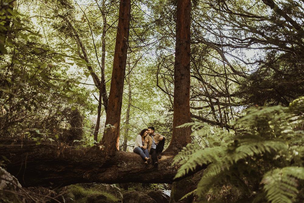 Isaiah&TaylorPhotography-Rafael+EbonyEngagementProposal-174.jpg