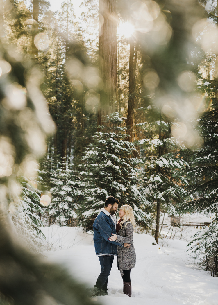 ©Isaiah-&-Taylor-Photography---George-&-Alyssa-Engagement---Sequoia-National-Park,-California-28.jpg
