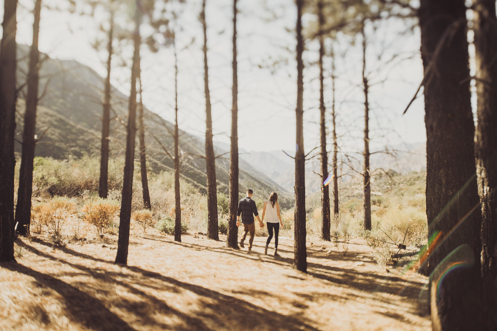 ©Isaiah + Taylor Photography - Los Angeles National Forest Engagement-0022.jpg