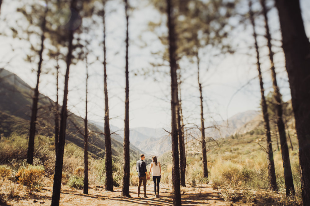 ©Isaiah + Taylor Photography - Los Angeles National Forest Engagement-0023.jpg