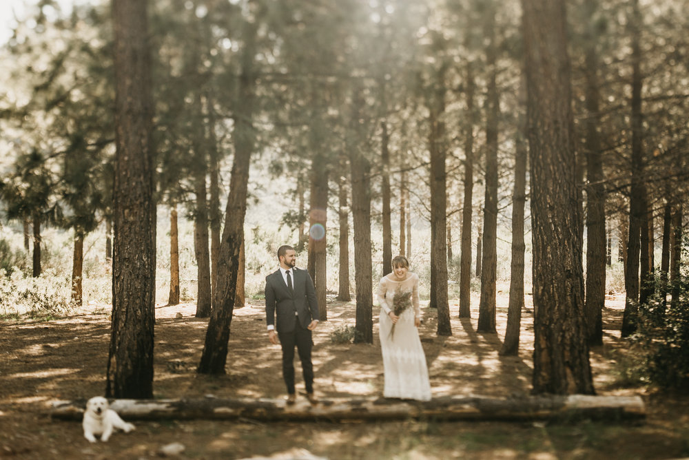 ©Isaiah + Taylor Photography - Los Angeles Wedding Photographers - Los Angeles Forest Wedding -9.jpg
