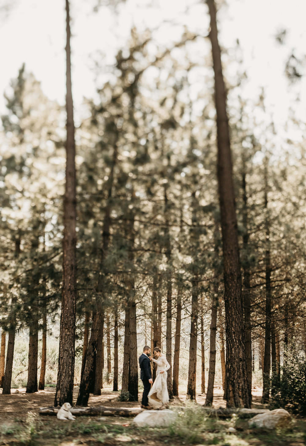 ©Isaiah + Taylor Photography - Los Angeles Wedding Photographers - Los Angeles Forest Wedding -10.jpg