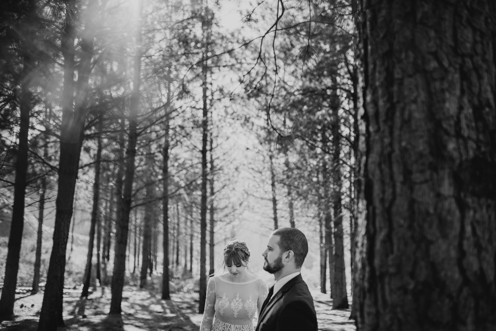 ©Isaiah + Taylor Photography - Los Angeles Wedding Photographers - Los Angeles Forest Wedding -24.jpg