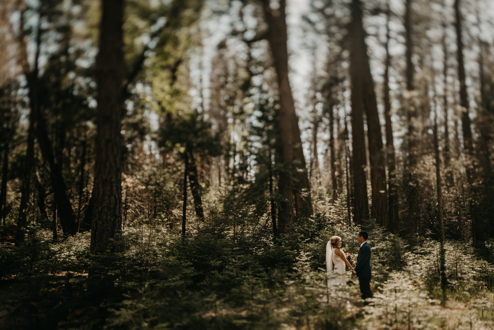 © Isaiah + Taylor Photography - Evergreen Lodge Destination Yoesmite Wedding - Los Angeles Wedding Photographer-128.jpg