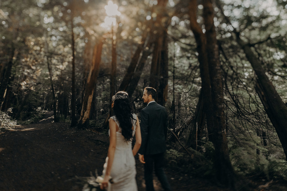 Isaiah + Taylor Photography - Cape Flattery Elopement, Olympia National Forest Wedding Photographer-022.jpg