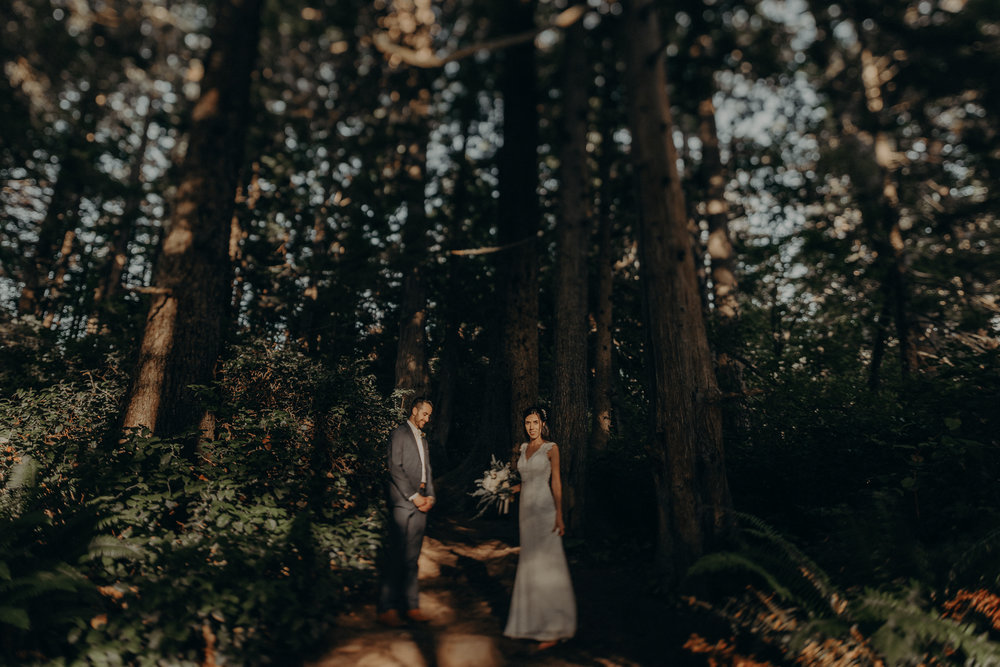 Isaiah + Taylor Photography - Cape Flattery Elopement, Olympia National Forest Wedding Photographer-132.jpg