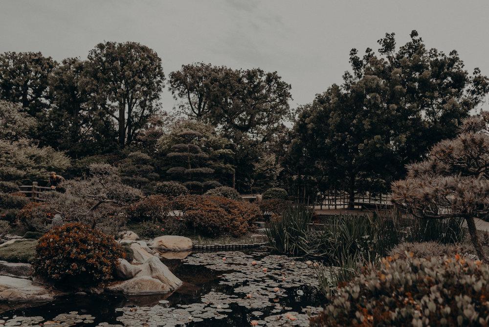 Long Beach Wedding Photographers - Japanese Botanical Garden - Earl Burns Miller - Cal State Long Beach - IsaiahAndTaylor.com-001.jpg