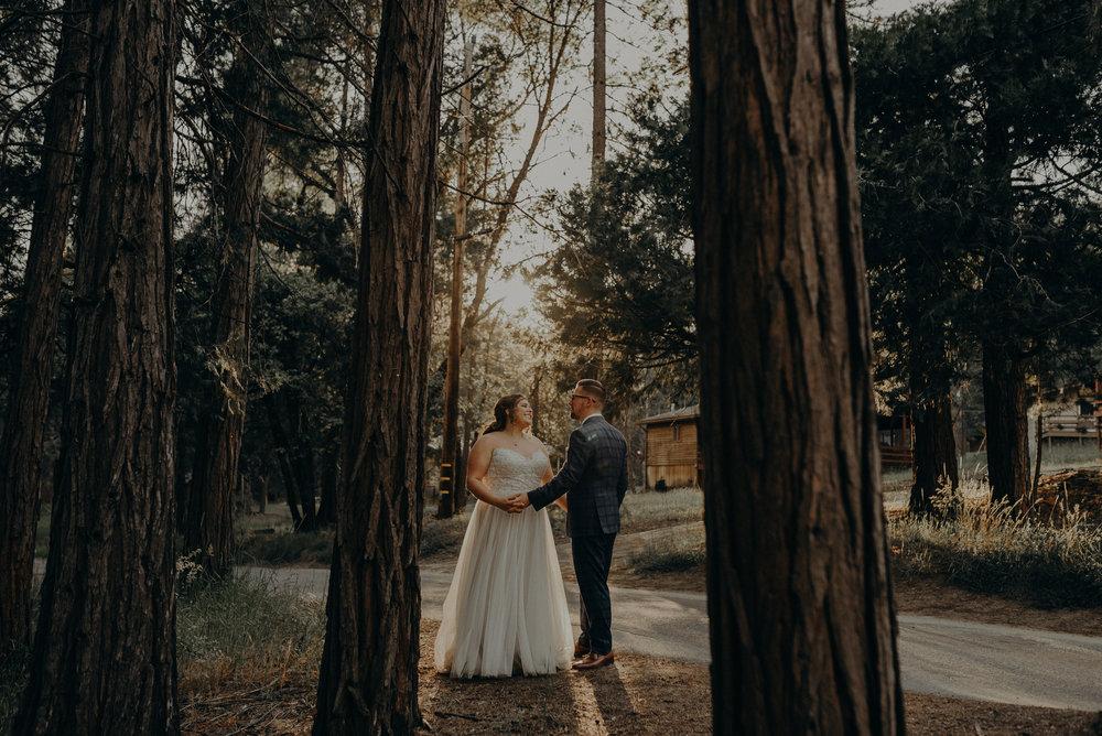 Los Angeles Wedding Photographers - Yosemite Destination Wedding Elopement - IsaiahAndTaylor.com -109.jpg