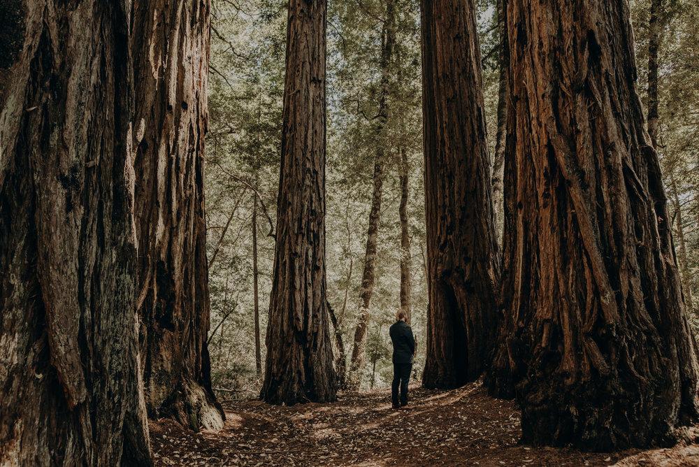 IsaiahAndTaylor.com - California Destination Elopement, Lake Leonard Reserve Wedding, Ukiah-049.jpg