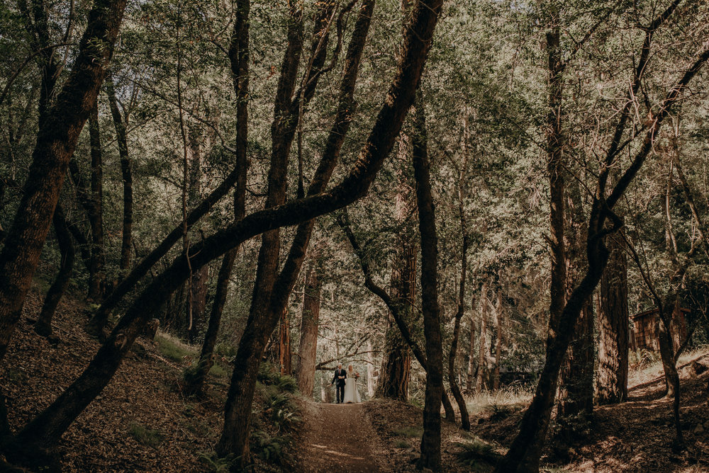 IsaiahAndTaylor.com - California Destination Elopement, Lake Leonard Reserve Wedding, Ukiah-086.jpg