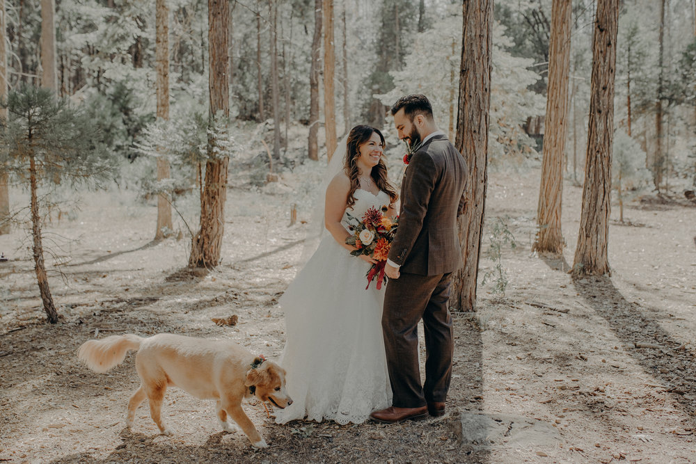 Yosemite Elopement Photographer - Evergreen Lodge Wedding Photographer - IsaiahAndTaylor.com-074.jpg