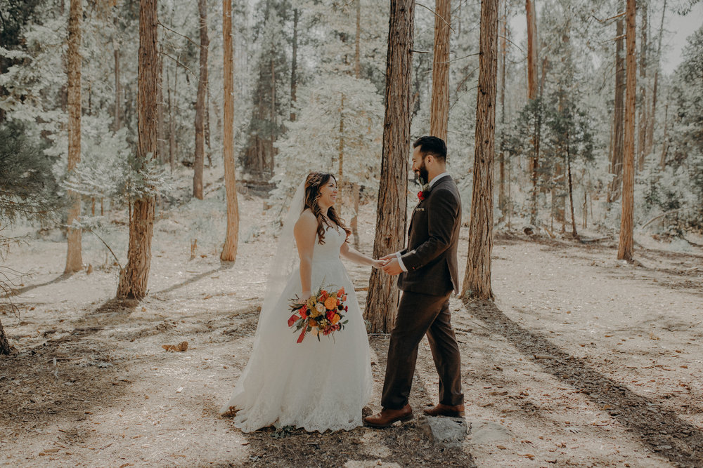 Yosemite Elopement Photographer - Evergreen Lodge Wedding Photographer - IsaiahAndTaylor.com-073.jpg