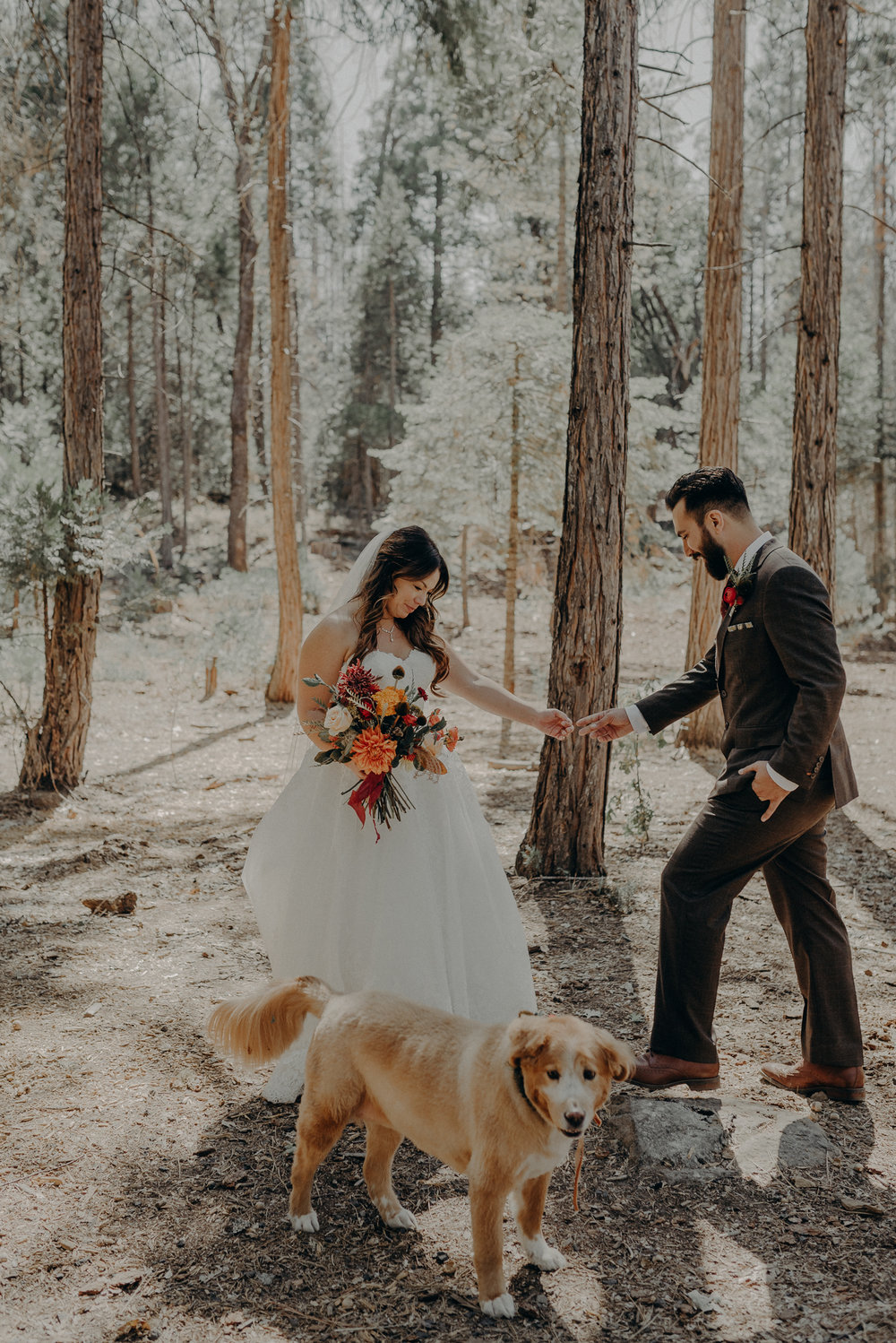 Yosemite Elopement Photographer - Evergreen Lodge Wedding Photographer - IsaiahAndTaylor.com-075.jpg