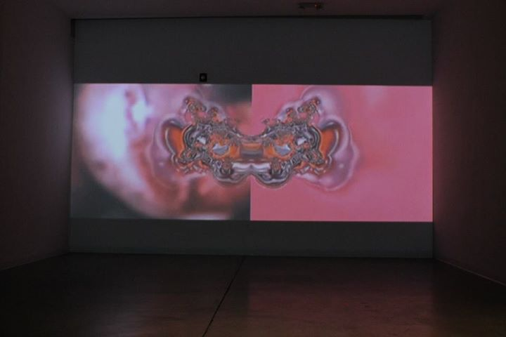 Janus 2012, extended single channel DVD projection looped.   Projected at BYOB RedLine Denver, 2015