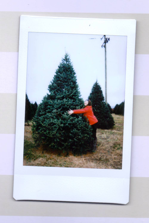 tree 3.jpeg