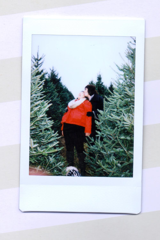 tree 5.jpeg