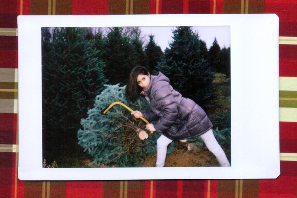 tree 8.jpeg