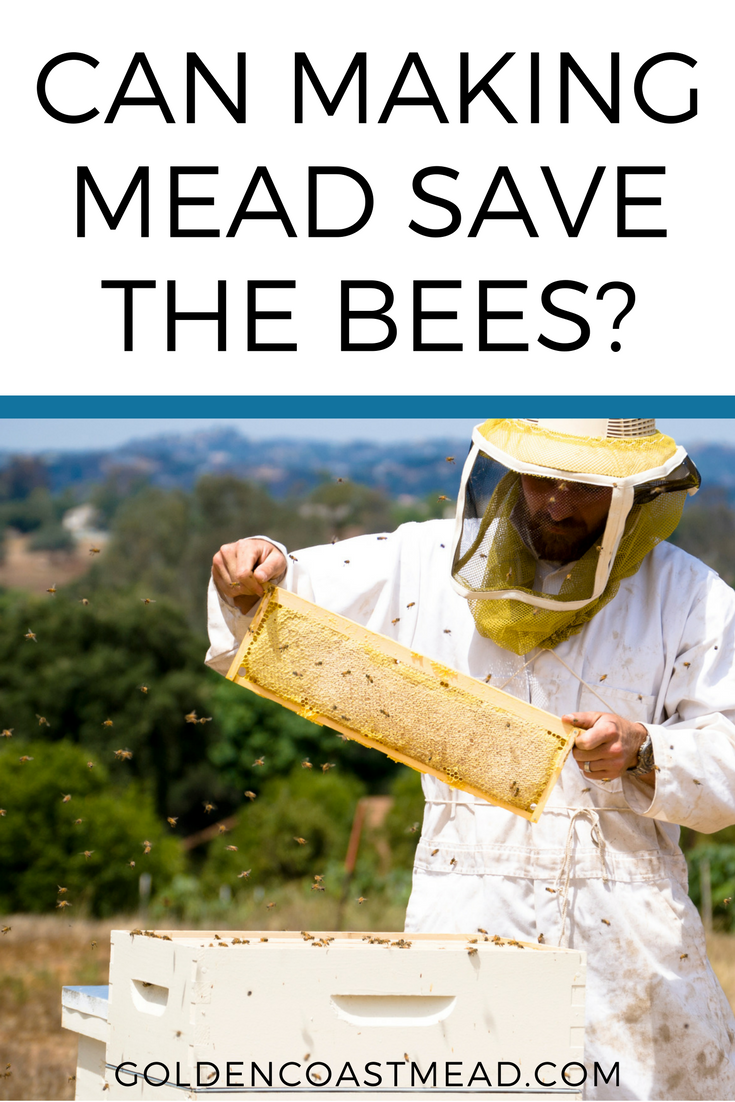 Can making mead save the bees? We've been questioned a lot about the safety of making mead with the decline of the honeybee population. The great news is that we CAN save the bees with booze! Click through to hear how this actually works: www.goldencoastme... | Honey, Beekeeping, Honey wine, Homebrew